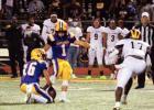 Bulldogs Trounce Panthers 49-13